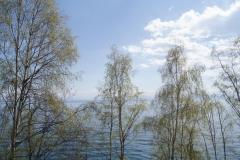 Vedep-Baikal-14