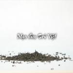 Mạn đàm trà Việt - Phim tài liệu